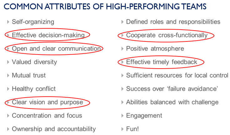 Common attributes of high performing teams